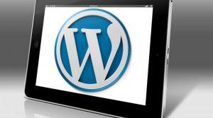 Read more about the article Kies het beste WordPress thema (theme) voor jouw website